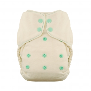 thirsties natural fitted one size mint